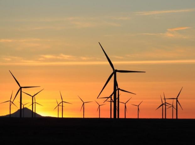 """2014年巴西风电领域将获429.8亿投资 【电缆网讯】据外媒报道,由于风能正在巴西继续迅速扩张,今年可再生能源开发商将投资70亿美元(约合人民币429.8亿元)在巴西风电领域。 根据巴西风能协会Abeeólica表示,风电领域必须克服供应链担忧问题,来确保新项目的成功实施。 """"供应链问题是一项新兴挑战,但是我们必须迅速克服。""""巴西风能协会主席Elbia Melo表示,""""去年,我们出售了4."""