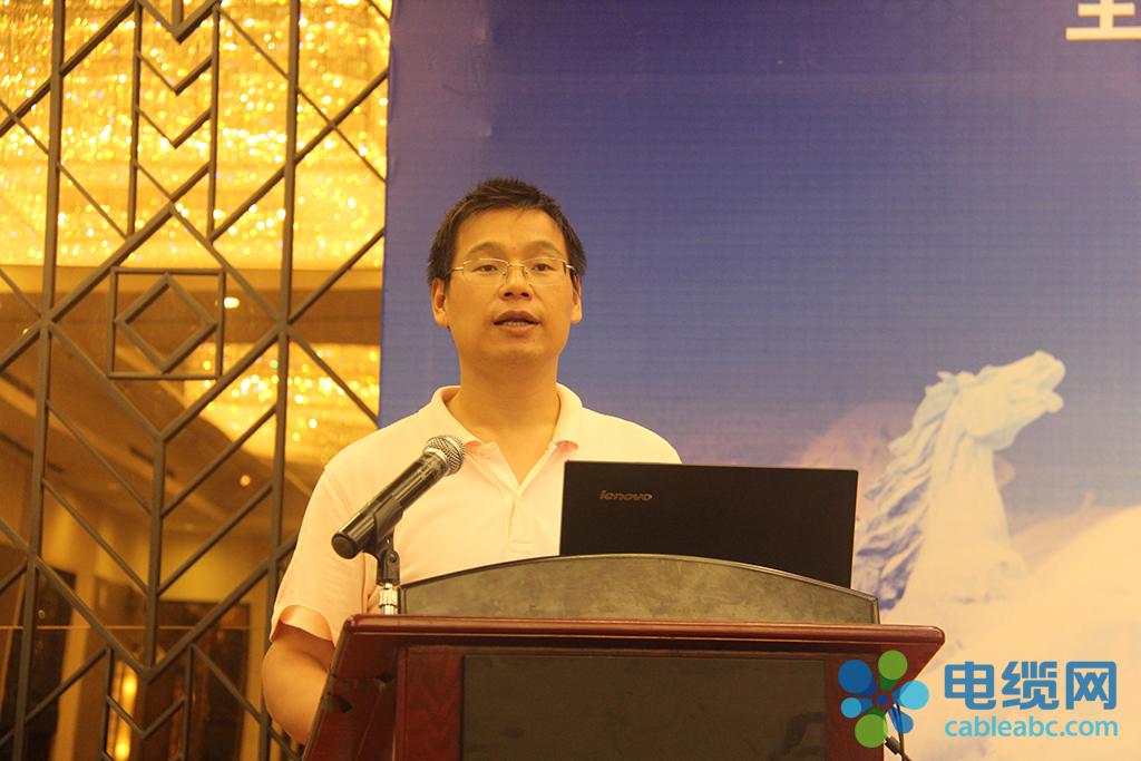 中超电缆有限公司董事长杨飞发言