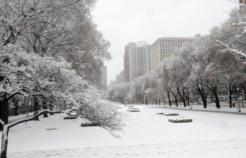 芝加哥遭暴风雪袭击致断电事件逾万起