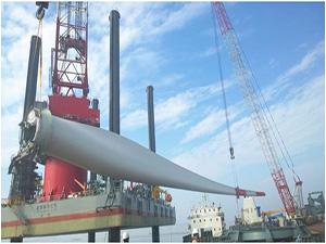 该项目经中广核风电公司专业技术人员验收,位于江苏省南通市如东县