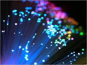 巴西亚马逊雨林光纤网络需1.4亿恢复施工