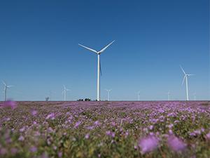 GE获河北建投近200兆瓦风电订单