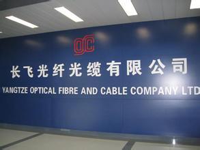 正式成为国内光纤光缆行业首家、湖北省首家A