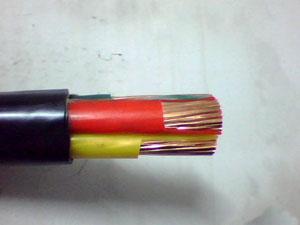 山东泰开电缆因产品抽检不合格被停标2个月-亚博