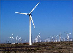 风电项目密集开标 风电设备行业