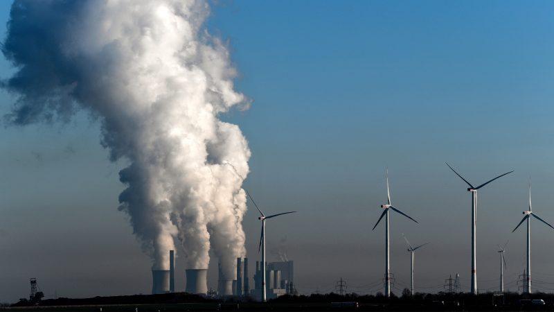 2019年欧盟煤炭发电量降24% 硬煤与褐煤下降明显
