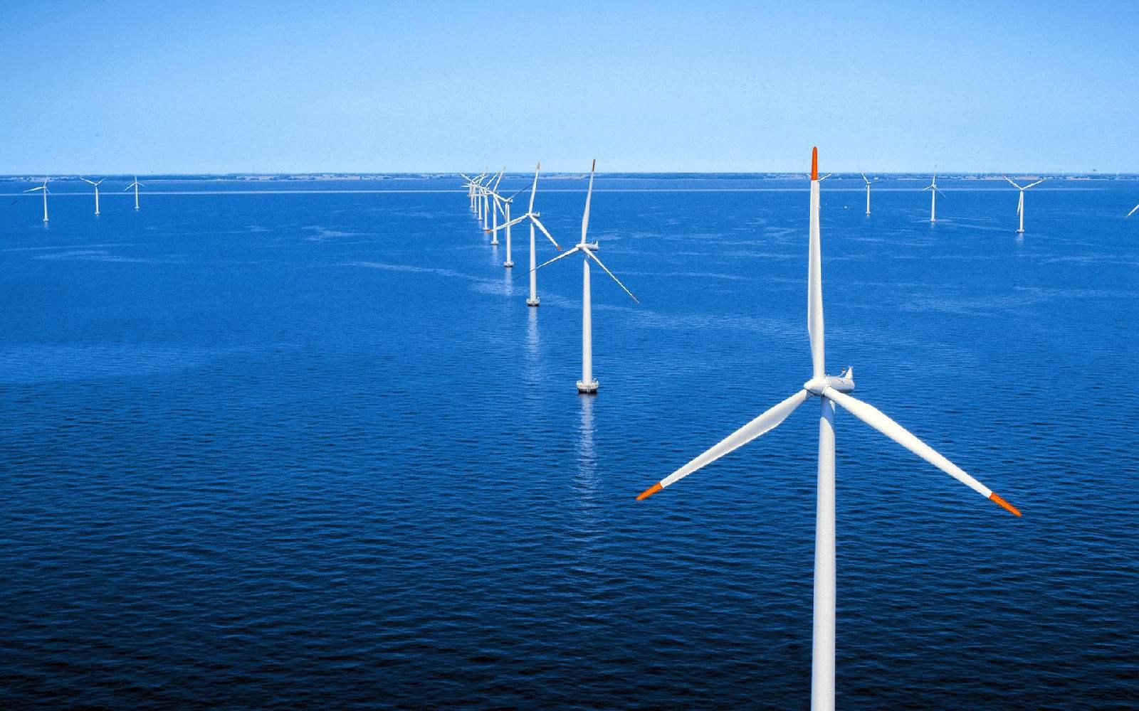 纽约将推出美国最大规模海上风电招标
