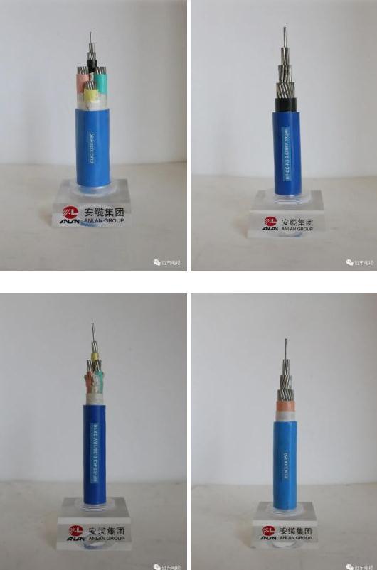 安缆核级电缆产品(部分)